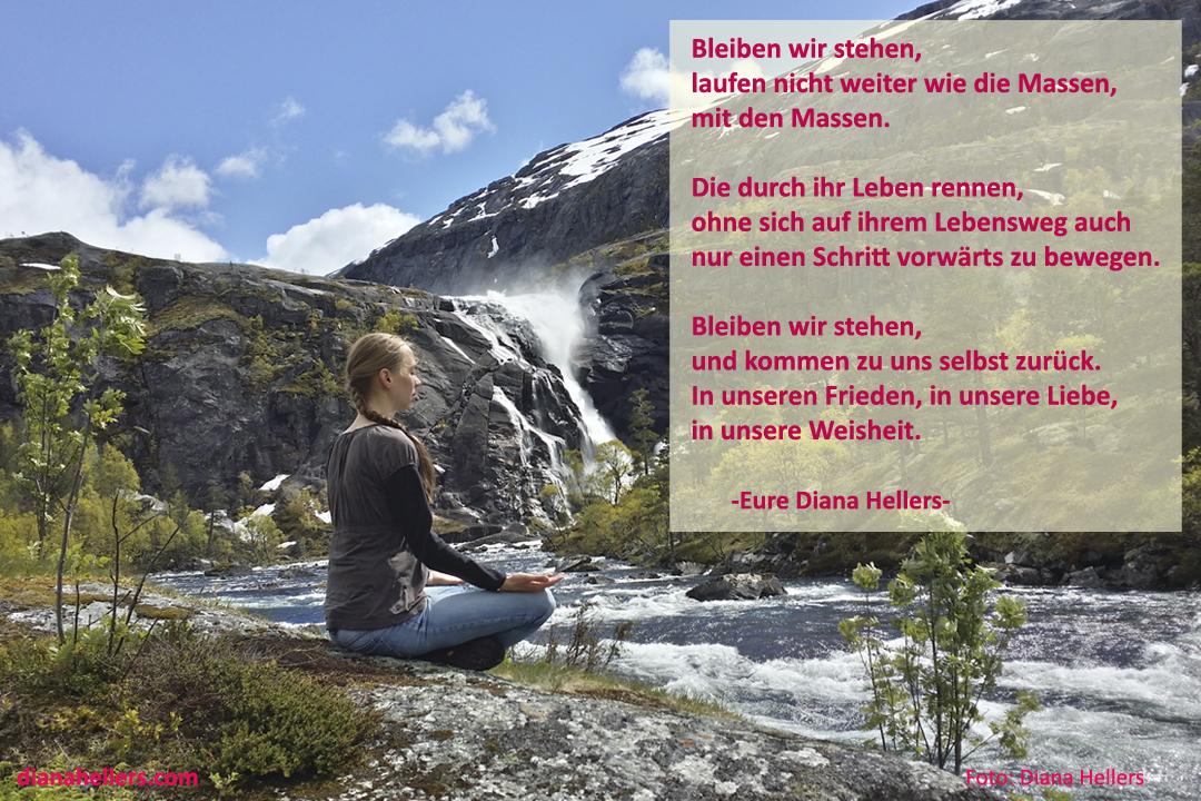 Bleiben wir stehen Diana Hellers
