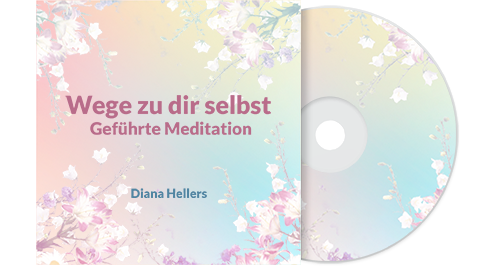 Meditationen Diana Hellers Cover