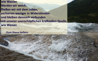 Das Leben fließt Diana Hellers