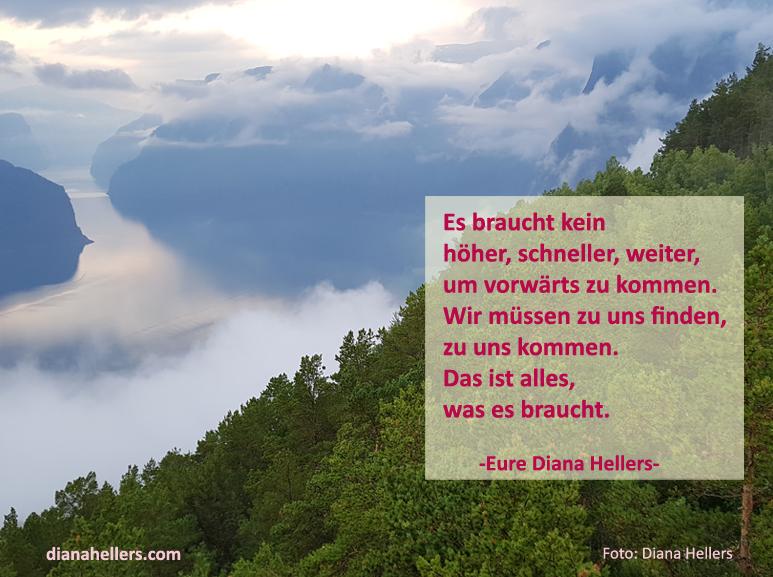 Was es braucht Diana Hellers